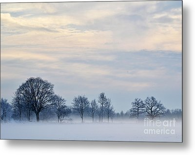 Metal Print featuring the photograph Misty Winter Day by Kennerth and Birgitta Kullman
