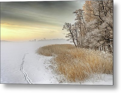 Misty Winter Morning Metal Print by Keijo Savolainen
