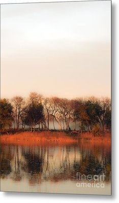 Misty Winter's Morning Metal Print