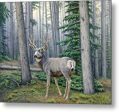 Misty Woods-buck Metal Print