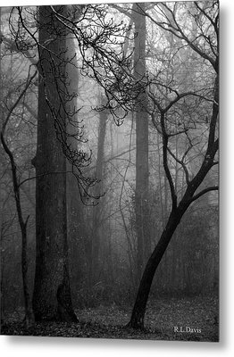 Misty Woods Metal Print