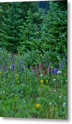 Metal Print featuring the photograph Mixed Flowers by Jeremy Rhoades