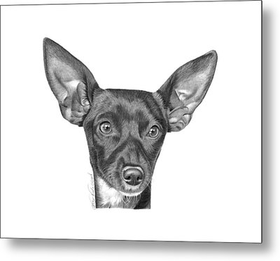 Metal Print featuring the drawing Mocha -036 by Abbey Noelle