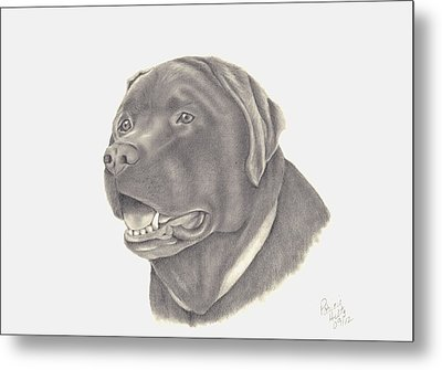 Metal Print featuring the drawing Mocha by Patricia Hiltz