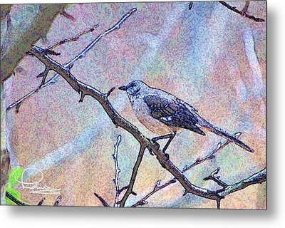Metal Print featuring the photograph Mocking Bird by Ludwig Keck