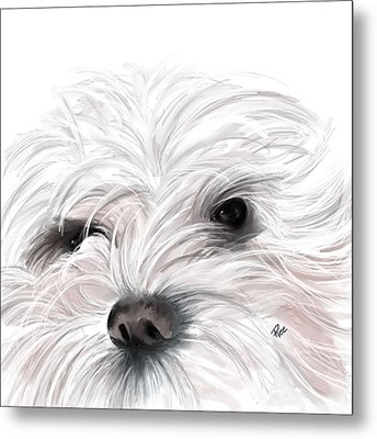 Mollie Metal Print by Maria Schaefers