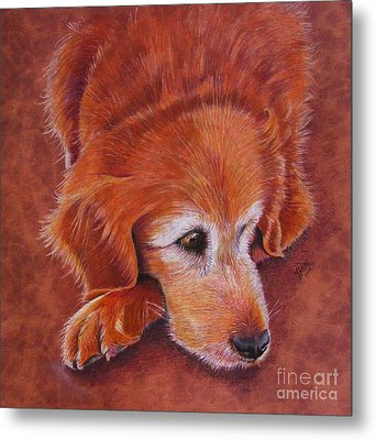 Mollie Metal Print by Marilyn Smith