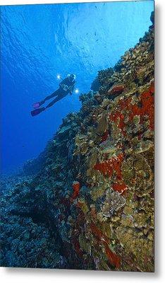 Molokini Maui Hawaii Usa Scuba Diver At Metal Print