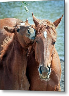 Mommy And Me Metal Print by Athena Mckinzie