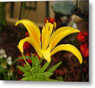 Mom's Yellow Flower Metal Print by B Wayne Mullins
