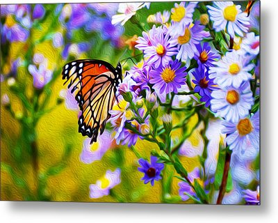 Monarch Butterfly 4 Metal Print