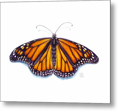 Monarch Butterfly Metal Print by Catherine Noel