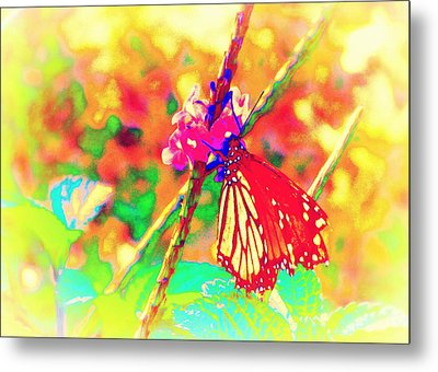 Metal Print featuring the painting Monarch Butterfly  by David Mckinney