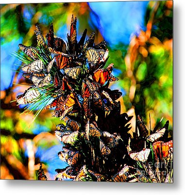 Monarch Butterfly Migration Metal Print by Tap On Photo