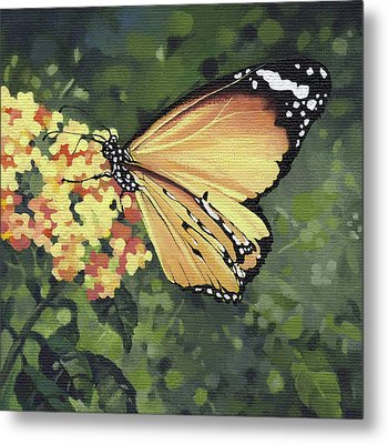 Monarch Butterfly Metal Print by Natasha Denger