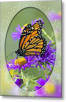 Monarch On Astor Metal Print by Judy  Johnson