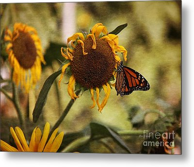 Monarch On The Sunflower Metal Print by Yumi Johnson