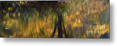 Monet At The Biltmore Metal Print by Anita Adams