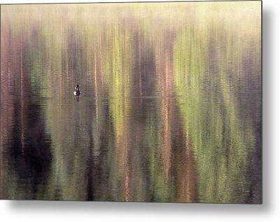 Metal Print featuring the photograph Monet's Duck by Ken Dietz