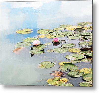 Metal Print featuring the photograph Monet's Garden by Brooke T Ryan
