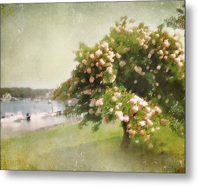 Monet's Tree Metal Print by Karen Lynch
