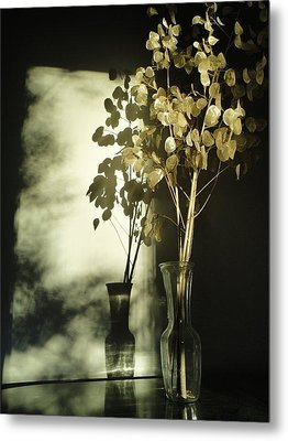 Money Plants Really Do Cast Shadows Metal Print by Guy Ricketts