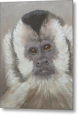 Monkey Gaze Metal Print