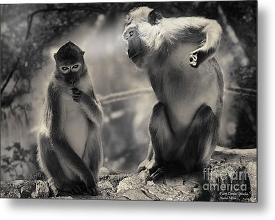 Metal Print featuring the photograph Monkeys In Freedom by Christine Sponchia