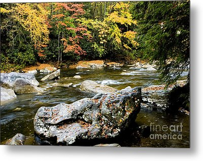 Monongahela National Forest Cranberry River Metal Print by Thomas R Fletcher