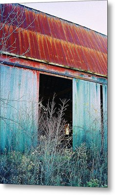 Monroe Co. Michigan Barn Metal Print by Daniel Thompson