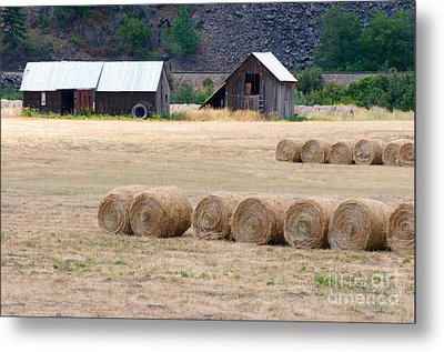 Metal Print featuring the photograph Montana Bales by Vinnie Oakes