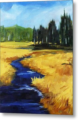 Montana Creek Metal Print