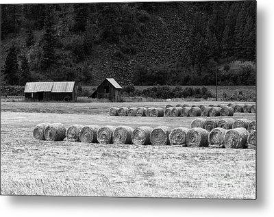 Metal Print featuring the photograph Montana Harvest B/w by Vinnie Oakes