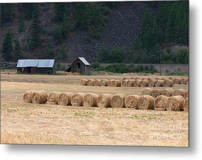 Metal Print featuring the photograph Montana Hay Harvest by Vinnie Oakes