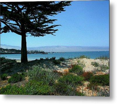 Monterey Dunes Metal Print