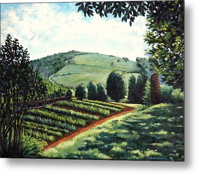 Monticello Vegetable Garden Metal Print by Penny Birch-Williams