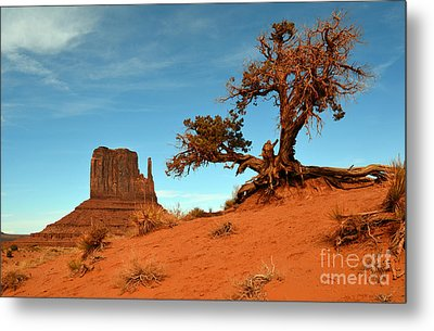Monument Valley Tree And Monolith Scenic Landscape Metal Print by Shawn O'Brien