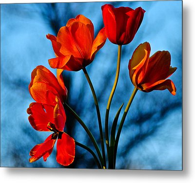Mood Bouquet Metal Print by Frozen in Time Fine Art Photography