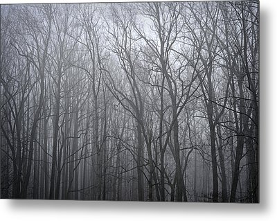 Moody Outlook Metal Print by Mary Zeman