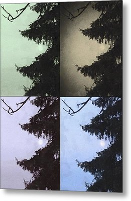 Moon And Tree Metal Print by Photographic Arts And Design Studio