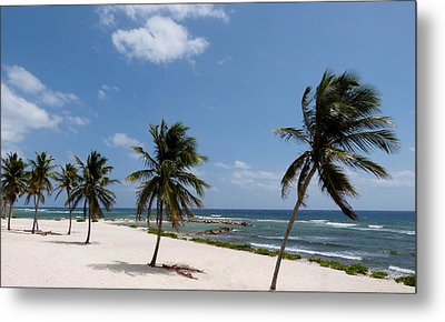 Metal Print featuring the photograph Moon Bay by Amar Sheow