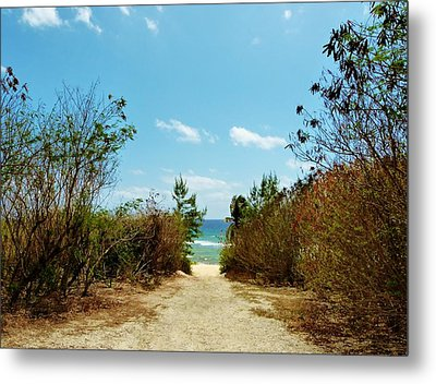 Metal Print featuring the photograph Moon Bay Walk by Amar Sheow