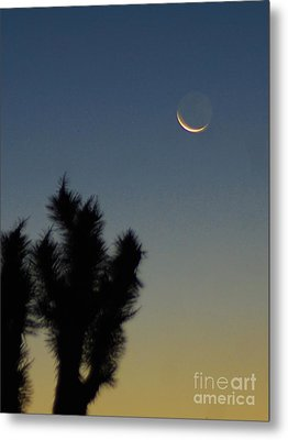 Metal Print featuring the photograph Moon Kissed by Angela J Wright