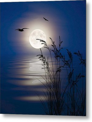Moon Light Silhouettes Metal Print by Nina Bradica