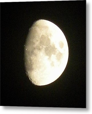 Moon Lit Night Metal Print