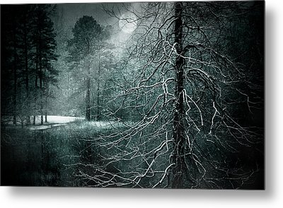Moon Misty Lake  Metal Print by Dorothy Walker