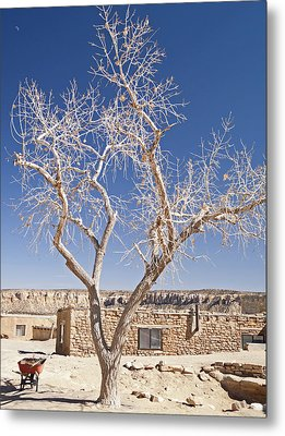 Moon Over Cottonwood Metal Print
