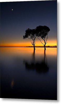 Moon Over Mangrove Trees Metal Print by Robert Charity