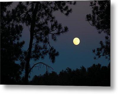 Moon Rise In Twilight Metal Print