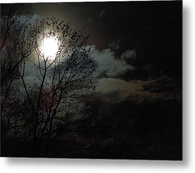 Metal Print featuring the photograph Moon Rise by Pete Trenholm